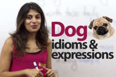 "Learn English Phrases & Idioms With ""dog"""