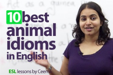 10 best Animal Idioms in English